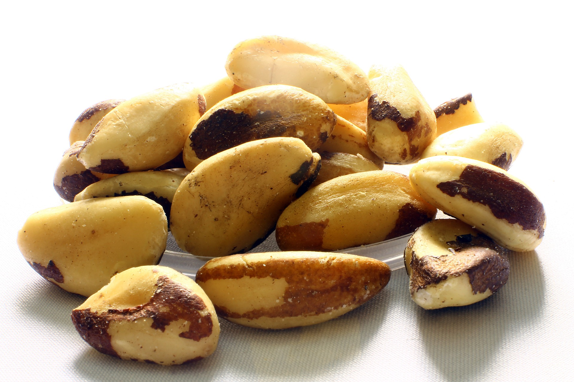 Read more about the article The Health Benefits of Brazil Nuts