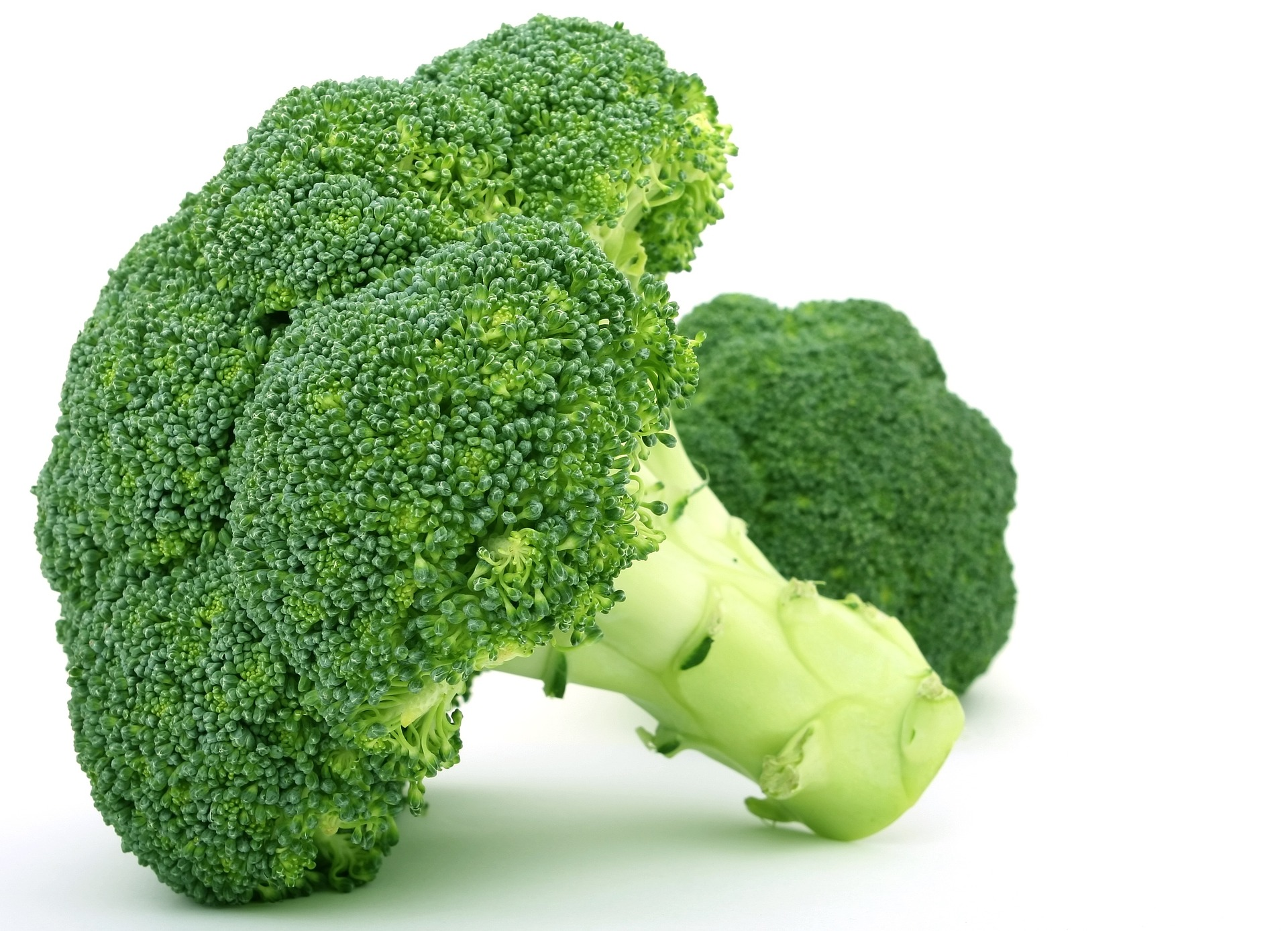 Read more about the article Eat Your Broccoli!