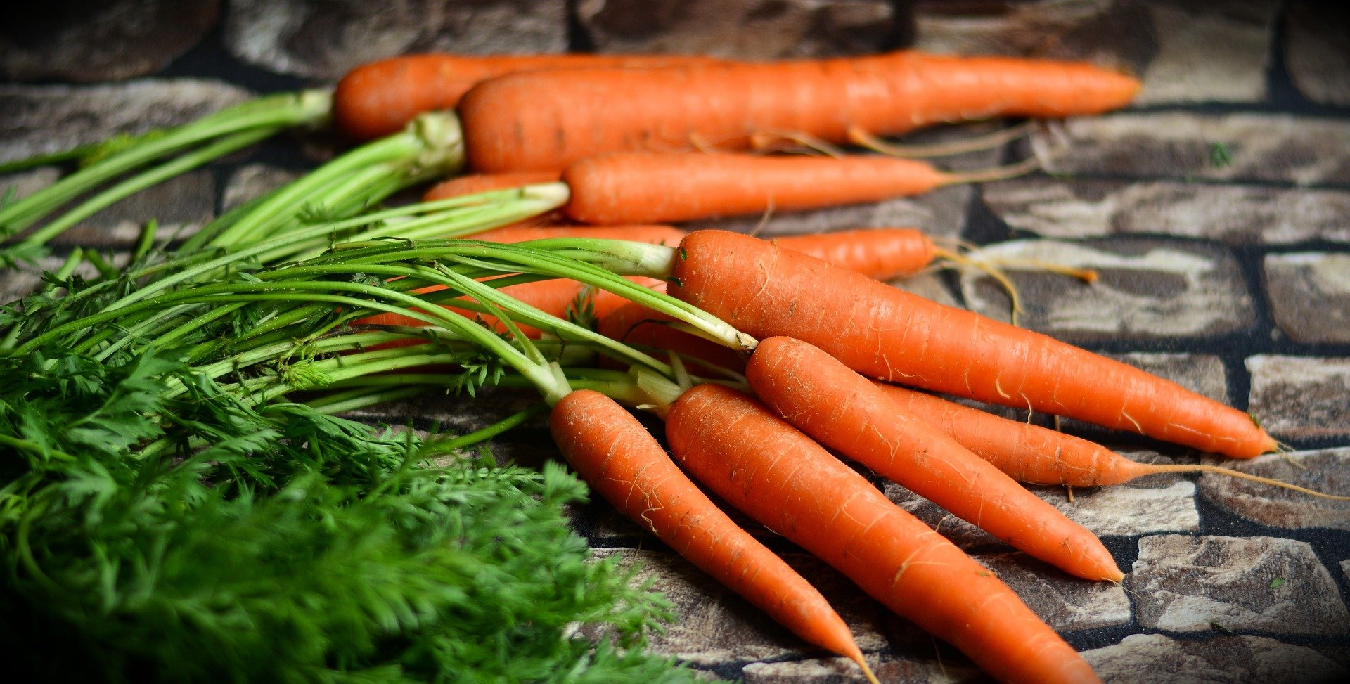 Read more about the article The Provitamin A Carotenoids and Osteoporosis