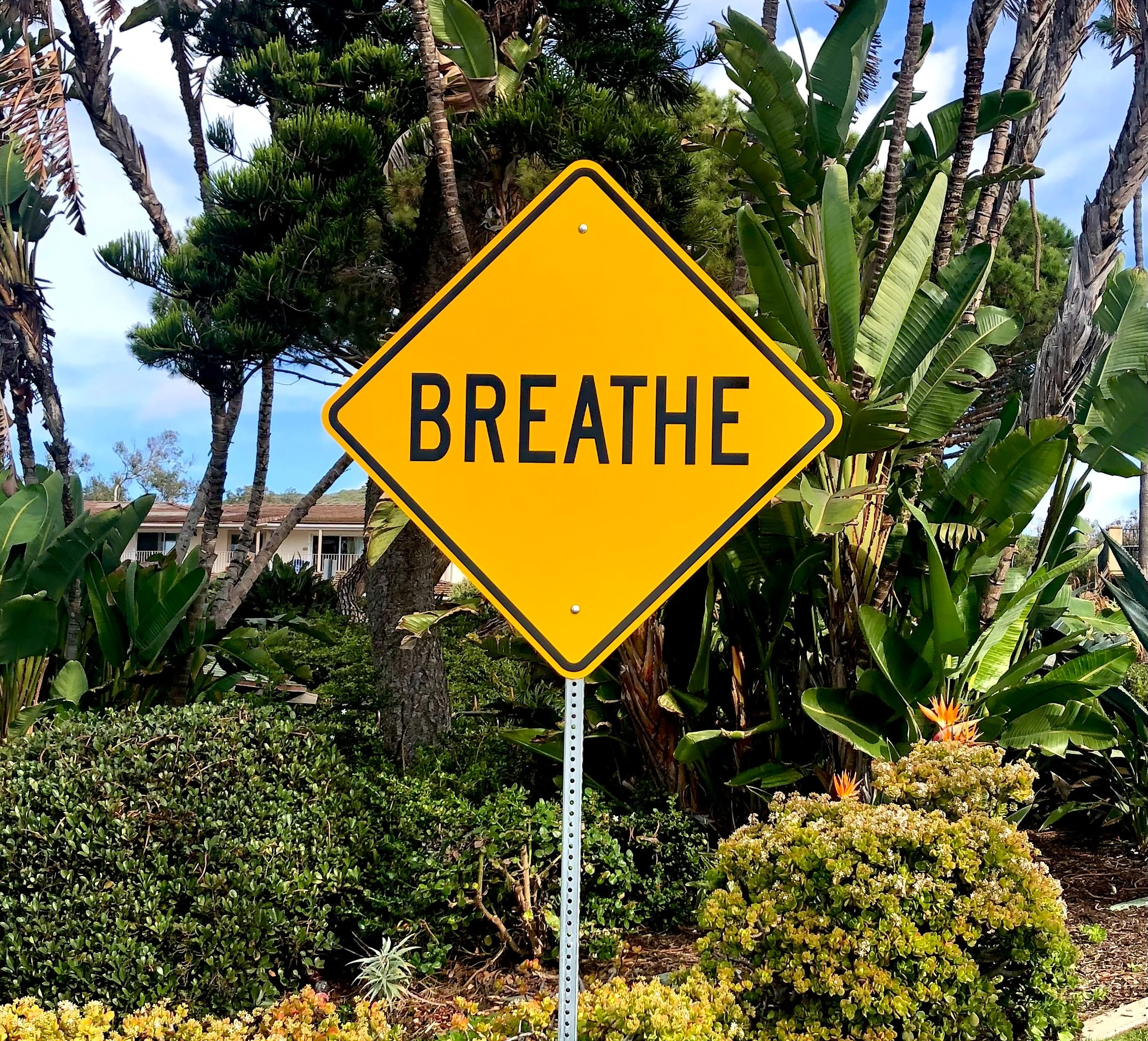 Read more about the article Stress, Breathing, Anxiety and Panic Attacks